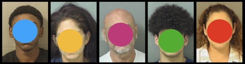 Crime Report: Burglaries and Batteries